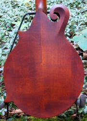 [Hand carved maple back]